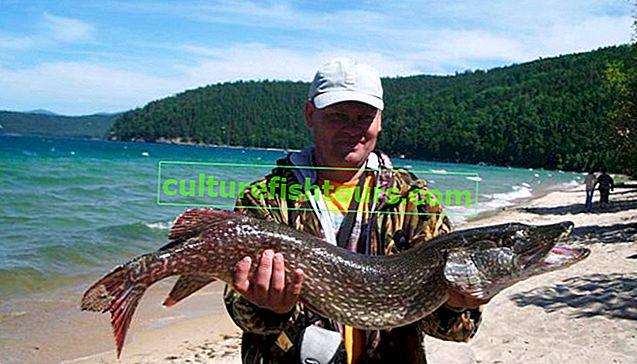 Ribolov na Bajkalu