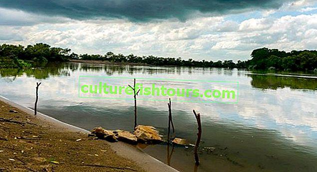 Риболовля на річці Кубань