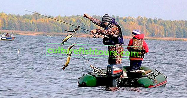 Риболовля на Красноярському морі