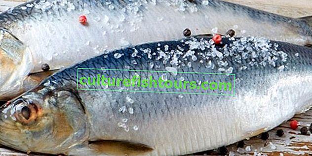 Методи за накисване на осолена риба