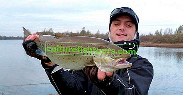 Риболовля в Калінінградській області