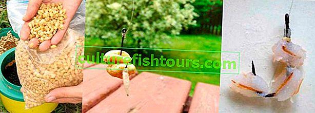 Перлен ечемик за риболов