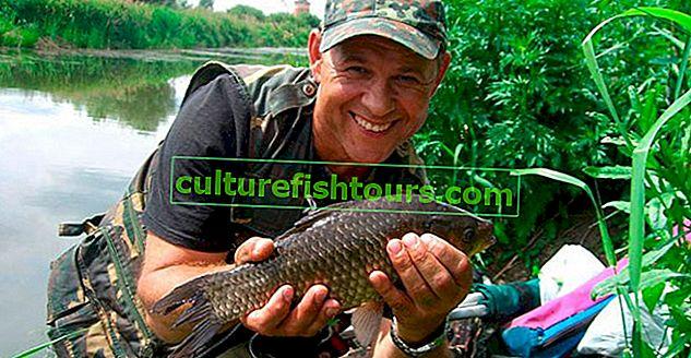 """Wędkowanie na farmie rybnej """"Biserovo"""""""