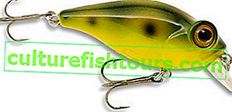 Majitel C`ultiva Bug Eye Bait