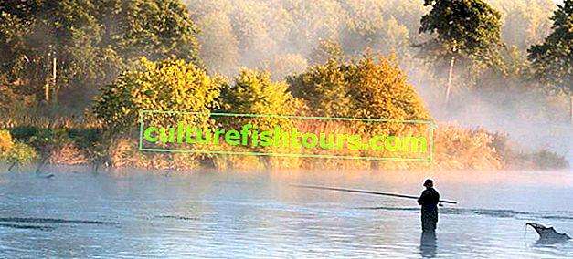 Karelia vahşi balık tutma yerleri