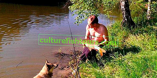 Безплатен риболов в предградията, карти на водоеми