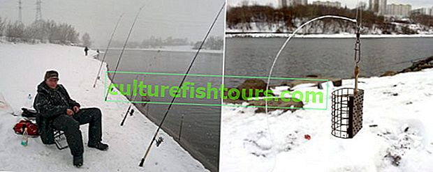 Fider ribolov zimi