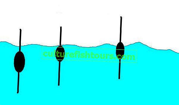 Як відвантажити поплавок для риболовлі