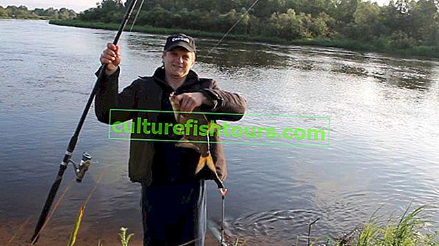 Feeder łowienie na rzece, jak łowić z prądem